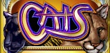 Cats slot logo