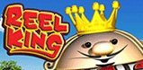 Cover art for Reel King slot