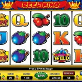 online gambling casino reel king