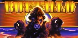Buffalo slot logo