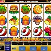 Big Kahuna Slot