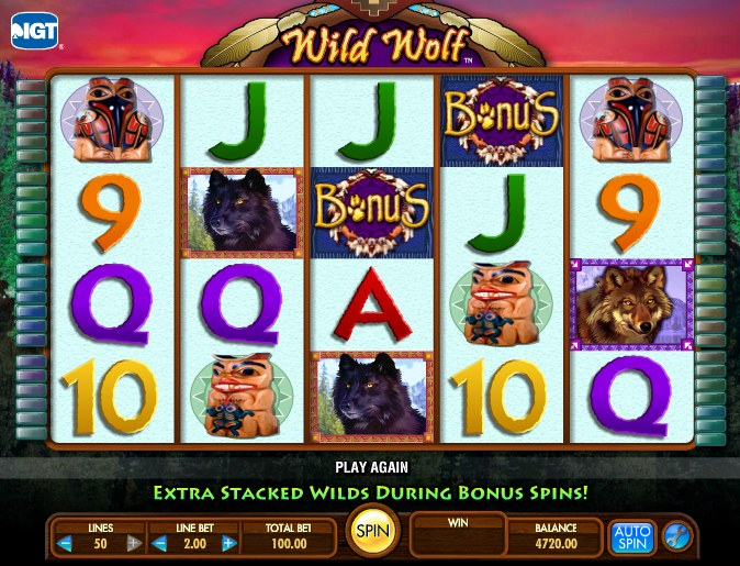 play free wild wolf video slots