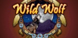 Cover art for Wild Wolf slot