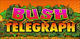 Cover art for Bush Telegraph slot