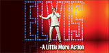 Elvis A Little More Action Logo