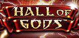 Cover art for Hall of Gods slot