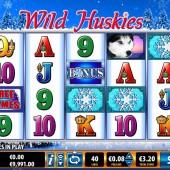 Wild Huskies Slot