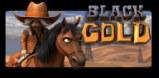 Cover art for Black Gold slot