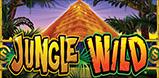 Cover art for Jungle Wild slot