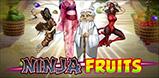 Cover art for Ninja Fruits slot