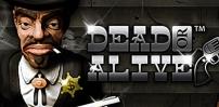 Cover art for Dead or Alive slot