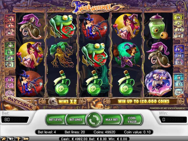 Wild Witches Slots