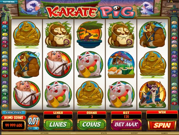 Karate Pig Slot Machine - Play Free Microgaming Games Online