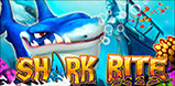 Shark Bite Logo