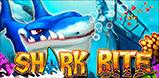Cover art for Shark Bite slot