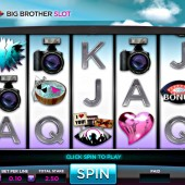 Big Brother Slot