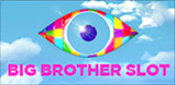 Cover art for Big Brother slot