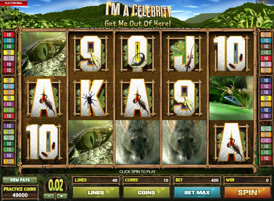 Im a Celebrity Get Me out of Here Slot - Play for Free Now