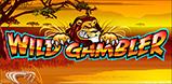 Cover art for Wild Gambler slot