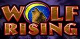 Cover art for Wolf Rising slot
