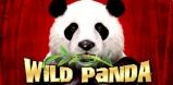 Cover art for Wild Panda slot