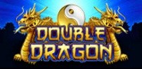 Cover art for Double Dragon slot