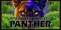 Cover art for Prowling Panther slot