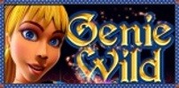 Cover art for Genie Wild slot