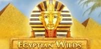 Cover art for Egyptian Wilds slot