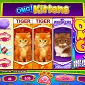 OMG! Kittens slot