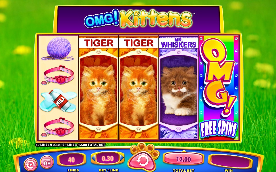 Omg kittens slot game from wms gaming kittens slot malvernweather Choice Image