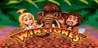 Winstones mobile logo