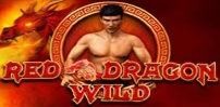 Cover art for Red Dragon Wild slot