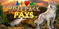 Cover art for Wolfpack Pays slot