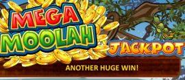 mega moolah huge win