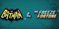 Cover art for Batman and Mr Freeze Fortune slot