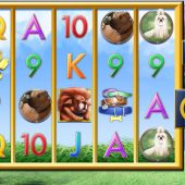 a bark in the park slot main game