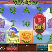 fields of fortune slot main game