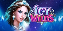 Cover art for Icy Wilds slot