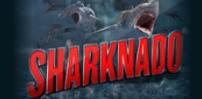 Cover art for Sharknado slot