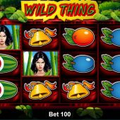 wild thing slot main game