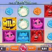copy cats slot main game