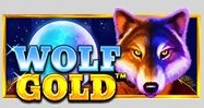 Cover art for Wolf Gold slot