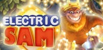 Cover art for Electric Sam slot