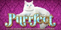 Cover art for Purrfect slot