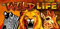 Cover art for The Wildlife slot