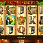 the wildlife slot logo