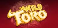 Cover art for Wild Toro slot