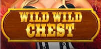 Cover art for Wild Wild Chest slot