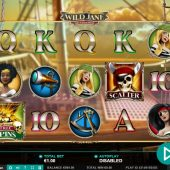 wild jane the lady pirate slot game